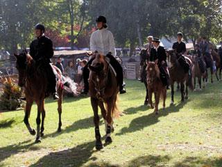 gite-pommeraie-isle-adam-centre-equestre